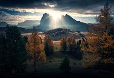 A New Start by Max Rive on 500px