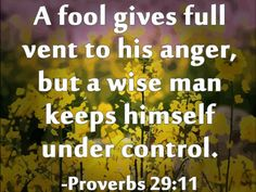 Proverbs 29, Book Of Proverbs, Proverbs Quotes, The Fool, Self