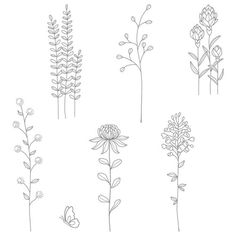 Stampin Up Flowering Fields Saleabration