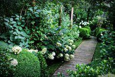 garden path . shade garden