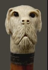 Walking Canes, Walking Sticks, Dog Stuff, Cannes, Hobbies, Lion Sculpture, Skull, Statue, Dogs