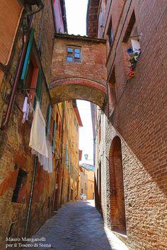 Via del Poggio è un vicolo che, partendo dalla Porta del Duomo nuovo, costeggia tutto il colle della Cattedrale, incrociando Via del Castoro e terminando in Via del Capitano. Agli inizi è in salita accentuata mentre, successivamente, diviene pianeggiante (tant'è che in passato era chiamata Strada del Piano di Santa Maria). Foto del Tesoro di Siena su Flickr.