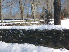 Laid stone walls along Route 169 in Canterbury, Conn. Credit: John-Manuel Andriote.  The history, science, and poetry of NE stone walls