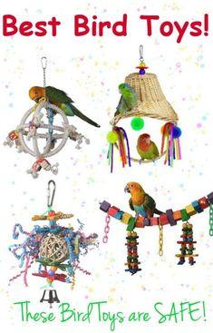 Diy Parrot Toys, Diy Bird Toys, Parrot Pet, Parrot Bird, Cockatiel Toys, Parakeet Toys, Budgies, Parrots, Loro Animal