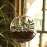 Terrain Terrariums with terrain #shopterrain