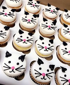 Cat/kitten cupcakes - The Best Cat Party Ideas Birthday Cake For Cat, Birthday Cupcakes, Birthday Fun, Birthday Kitty, Cat Birthday Parties, Birthday Ideas, Cupcakes Chat, Cupcake Cakes, Kitten Party