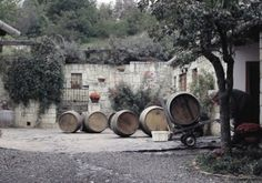 "The history of the Gönci Barrel In his writing, ""Vinicultura Tokajiensis"" Bél Mátyás claimed that if there is something in the world which has been equally praised all over the world that must be the."