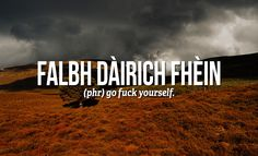 Sweary Scottish Gaelic Words You Need To Use Right Now For when you need a more poetic way of telling some arsehole to fuck off.For when you need a more poetic way of telling some arsehole to fuck off. Scottish Words, Scottish Quotes, Scottish Tattoos, Irish Quotes, Scottish Gaelic Phrases, Scottish Insults, Irish Sayings, Gaelic Quotes, Gaelic Words