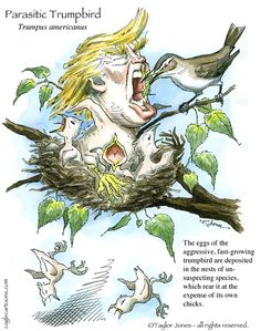 Taylor Jones - Politicalcartoons.com - Springtime for Donald - COLOR - English - donald,trump,parasitic,trumpbird,2016,republican,presidential,campaign,rude,obnoxious,authoritarian