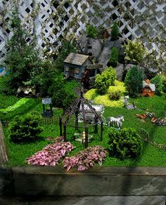 Fairy Garden Village   Flickr - Photo Sharing!