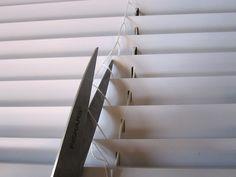 9 Stunning Useful Ideas: Diy Blinds Roller blinds for windows natural.Modern Blinds Cabinets blinds and curtains how to make.Blackout Blinds For Windows. Mini Blinds, Blinds For Windows, Window Blinds, Wood Blinds, Blinds Curtains, Fabric Blinds, Bedroom Blinds, Shutter Blinds, White Blinds