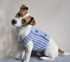 PLEASE NOTE: THIS PATTERN IS KNITTING WITH CROCHET ELEMENTSIf you you now basic methods in knit and crochet, than you can make this sweater for your dog This pattern is for a medium small dog, but it's very easy to make it larger. Measurements: Neck – 14'' - 15'' Chest –17''- 18''A suggested yarn is shown below.