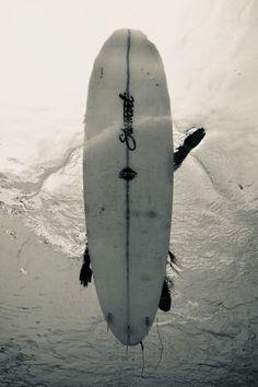 a34e3cef001 349 Best Surf s Up.... images