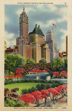 Fifth Avenue Hotels Near Plaza Central Park New York City NYC Vintage Postcard (unused)