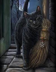 Resultado de imagen para black cat on broom
