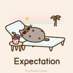 Pusheen the Cat Sunbathing