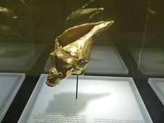 Musée de l'or Bogota Colombie 01 2016
