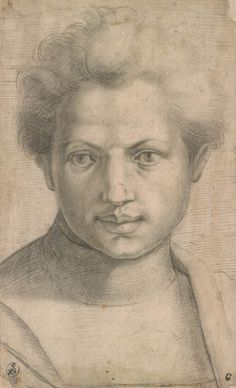 After Andrea del Sarto | Head and Shoulders of a Young Man Seen Full Face | The Morgan Library & Museum
