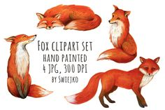 Fox illustration, watercolor clipart by swiejko on Creative Market