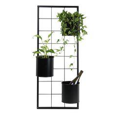 Svartmålat metallgaller för väggmontage. En optimal lösning för att använda utrymmet på balkongen bättre och få saker upp i höjden. Det finns olika tillbehör till detta. Ringar för blomkrukor, blomlådor samt förvaringslådor i teak.        Mått: Höjd: 95 cm Bredd: 39 cm. Ladder Decor, Shelving, Teak, Interior Design, Plants, Living, Home Decor, Oasis, Patio