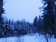 Pukinmäki,Finland