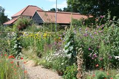 We must adjust our sense of aesthetics: wildlife gardening - The Discerning Gardener
