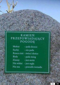 Polish Memes, Weekend Humor, Funny Mems, Meme Lord, More Than Words, Life Humor, Best Memes, Funny Photos, Feel Good