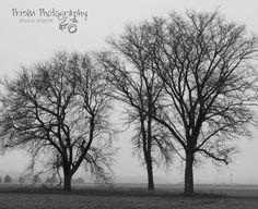 #prismphotography #photography #wisconsin #oconomowoc #photographerinwisconsin
