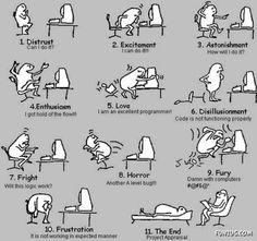 Emotions of a Software Developer