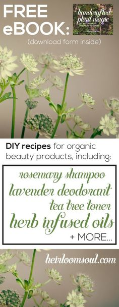 Easy DIY bath & beauty product recipes that are completely natural and organic - banish toxins from your daily routine for good! - Handcrafted Plant Magic - DIY Self-Care Rituals Inspired by My Garden - Free Ebook! | Heirloomsoul.com