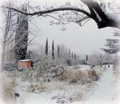 Onirique cette image du jardin bio de la Bonne Etape / Dreamy organic garden in La Bonne Etape