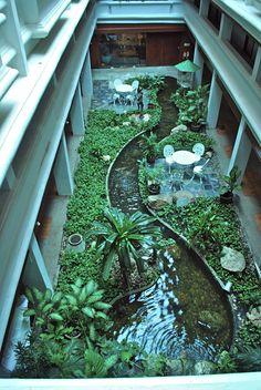 Tranquil inner city office garden Blue Dreams revisited