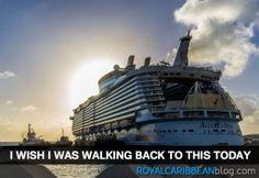 I definitely do! #cruise #travel