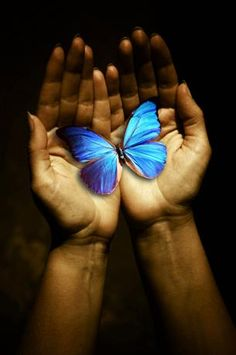 """""""Any original and wholehearted response to life carries the capacity to shift the energy of consciousness, and the result is transformation of one degree or another."""" ~Richard Moss"""