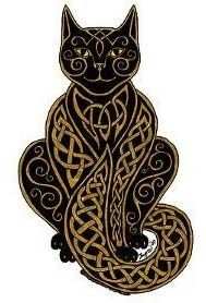 Image result for celtic cat
