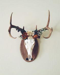 Marvelous cool awesome Deer crown European mount… – Home Decor Ideas…… by www.danazhome-dec… The post cool awesome Deer crown ✨ European mount… – Home Decor Ideas…… by www.da… appeared first . European Mount, Deer Mounts, Deer Decor, Deer Mount Decor, Wall Decor, Antler Art, Antler Crafts, Cow Skull, Deer Skull Art