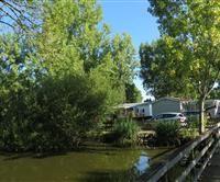 - Le Parc de la Grève Saint, Photos, Camping, Plants, Park, Campsite, Pictures, Photographs, Flora