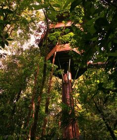 Finca Bella Vista in Costa Rica, a community of sustainable treehouses in the jungle canopy, connected by zip lines and suspension bridges, is an Ewok Village come to life.