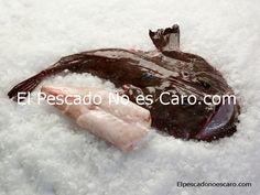 Colas de Rape Mediano Austral. (2-3 Piezas/kg)    Se sirve en bolsas por pieza y en cajas de 20 Kgs. Producto limpio (eviscerado) y listo para cocinar.    Producto salvaje, ultracongelado en el momento de captura.    Este pescado procedente del Atlántico Sur se caracteriza por su forma (con una cabeza extremadamente grande) y la variedad en su forma (de 30 cms a 2 metros de longitud). Es ideal para preparar a la cazuela, plancha, cocido, salsa verde y salpicones.