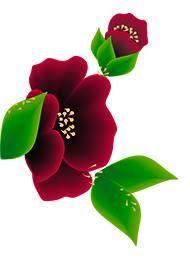 Imagens para Adesivos de Unhas-Rosas e Flores - IMAGENS DE ADESIVOS DE UNHAS