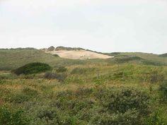 Heemskerkse duinen