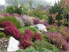 Kleine naturnahe Bereiche, zum einen bestehend aus einem Kiesgarten mit Gräser und einer Bienenweide mit mehr als 30 verschiedenen Blühpflanzen für Bienen, Hummeln und Schmetterlinge. Der andere Bereich ist eine alpine Heidelandschaft mit kleinen Grüppchen von Wildrosen, Azaleen, Kräutern, etc. Der Garten kann nach telefonischer Anmeldung besucht werden. Innterrassenweg 2a 83536 Gars am Inn Tel.: 08073-9146833