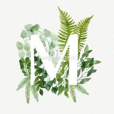 'Floral letter M' Photographic Print by helga-wigandt Floral letter M. Beautiful green leaves and branches painted with watercolor. Watercolor eucalyptus and fern foliage letter. Green Watercolor, Watercolor Leaves, Watercolor Cards, Watercolour Painting, Watercolours, Watercolor Lettering, Hand Lettering, Lettering Ideas, Lettering Styles