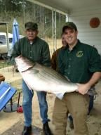 A Dora man has shattered the state record for largest striped bass by reeling in a monster of a fish.    James Bramlett caught the 70 pound, 47 inch long bass while fishing on the Warrior River by the Gorgas Steam Plant on Thursday.    The old state record was 55 pounds