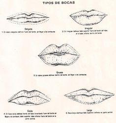Distintos tipo de labios.
