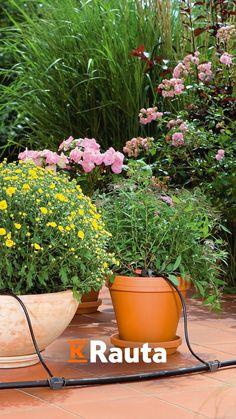 Parvekkeen sekä pihan kukat ja kasvit säilyvät virkeinä myös näppärästi lomailun ajan, kun hyödynnät automaattisesti toimivaa kastelujärjestelmää. Hintakaan ei päätä huimaa. Outdoors, Garden, Plants, Garten, Lawn And Garden, Gardens, Plant, Outdoor Rooms, Gardening