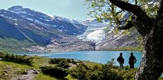 4A Svartisen Glacier: Visit one of Norway's largest glaciers in the realm of the sea eagle
