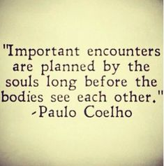 """Important encounters area planned by the souls log before the bodies see each other."" -Paulo Coelho"