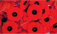Image result for canadian poppies for remembrance day
