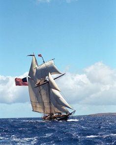 the tall ship Lynx